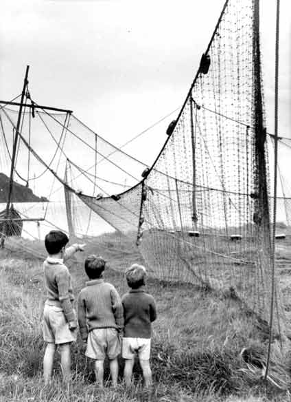 Bag nets drying on the links - c1960