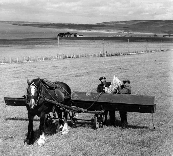 Rosefarm wartime 1940