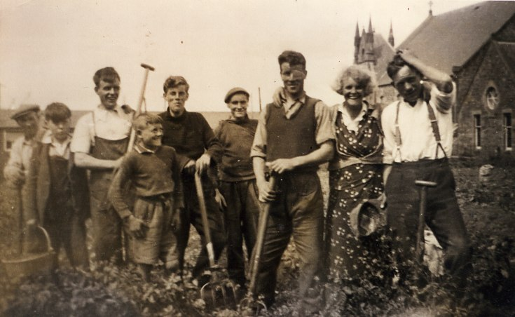 Tattie Picking behind the West Church -c1950