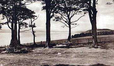View from Mains Avenue - postcard