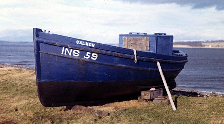 'Salmon' INS 59