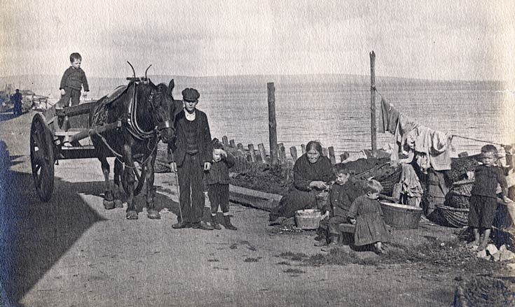 Horse and Cart on Shore Street