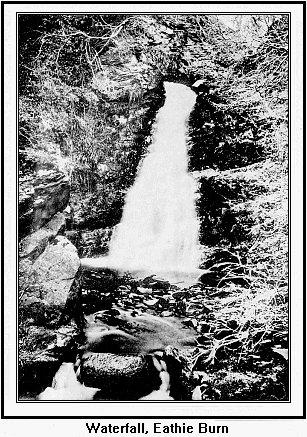 Eathie Waterfall
