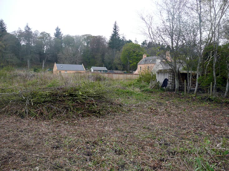 Cromarty Allotments - The Old Tennis Courts in April before clearing