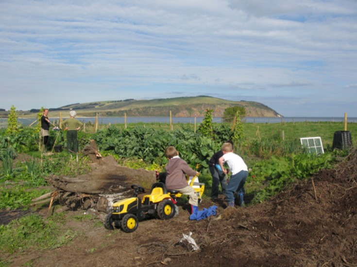 Cromarty Allotments Shed - Great to see the kids getting involved