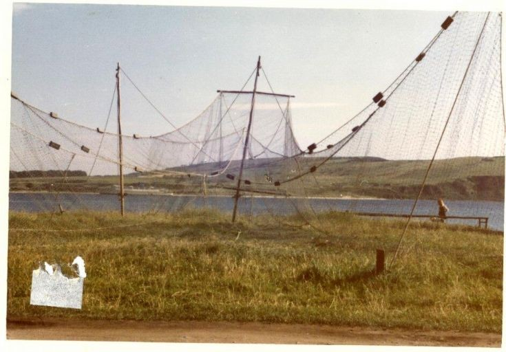Salmon Fishing net drying in the sun. summer 1973.