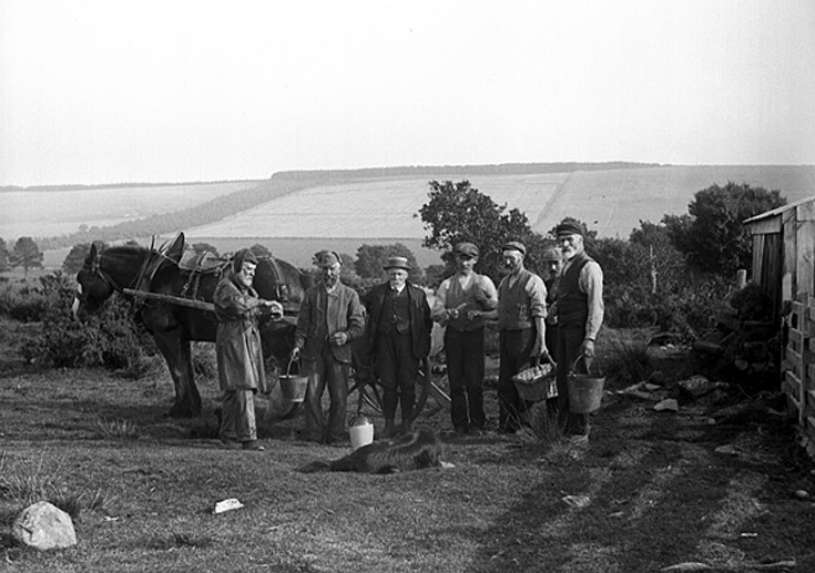 Farming just before WW1