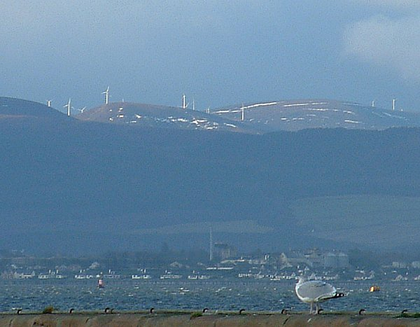Ardross Windfarm from Cromarty Harbour